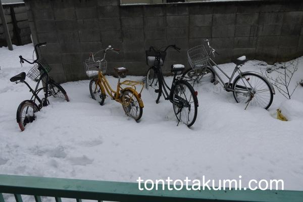 雪が積もった状態